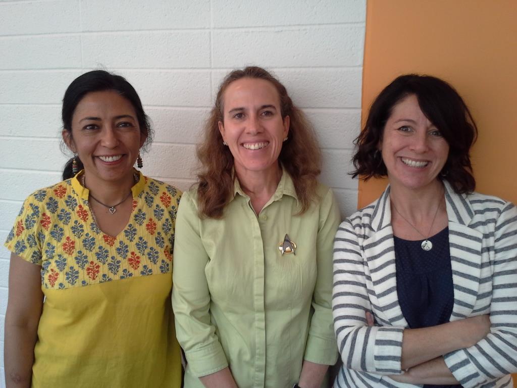 Aparna Gollapudi, Pam Coke, and Roze Hentschell