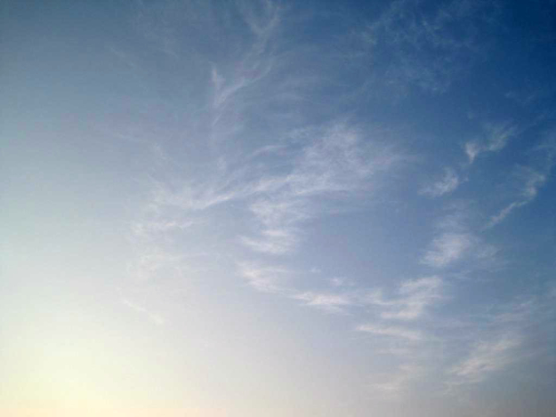 skyfeathers