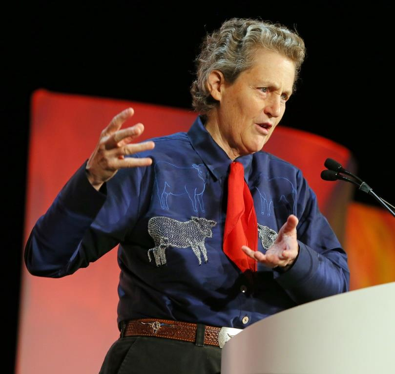 thinking in pictures temple grandin pdf