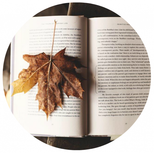 Image of leaf on a book
