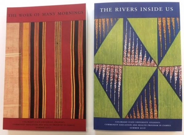 Covers of two past essay collections