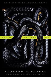 Slow Lightening Book Cover