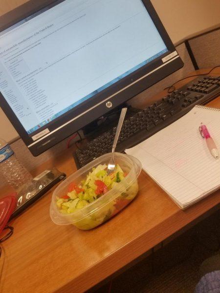 Zahra Albajhan's dinner and computer time