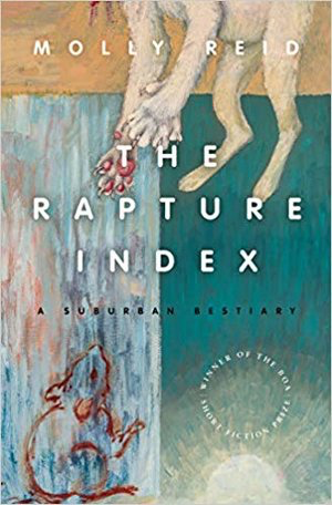 The Rapture Index Book Cover